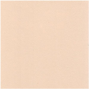 D102 Beige (finish)